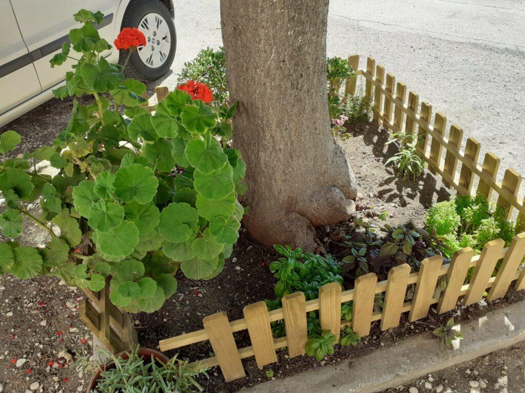 giardino aromatico redcasavacanzemarotta